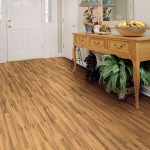 Shaw Laminate - Natural Treasures-7