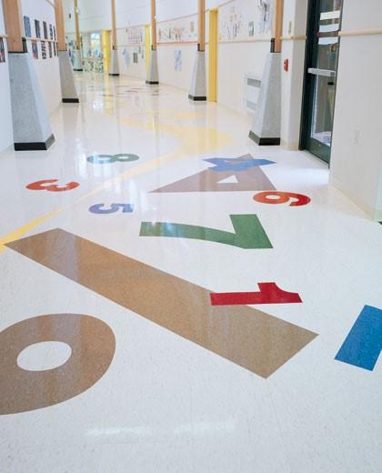 Educational Market Segment Resilient Flooring
